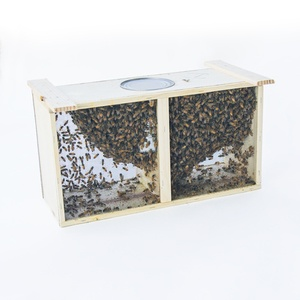 Bee Packages