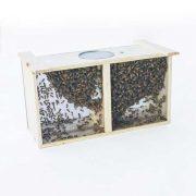 3 lb. Carniolan Honey Bee Package